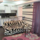 hotels in zaporozhye-hotel two bedroom apartment gagarina street